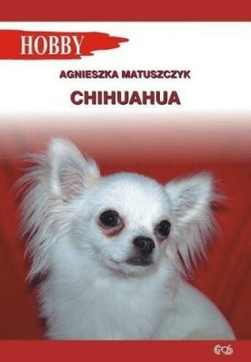 Chihuahua wyd. 2018 - Agnieszka Matuszczyk - Książki Książki obcojęzyczne