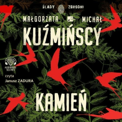 Kamień. Audiobook
